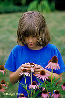HS18-154z  Girl examining flowers in garden - purple coneflowers - Echinacea purpurea