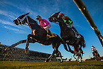 Jack Milton ridden by Joel rosario and  Infinite Magic with Joe Talamo race in the Hollywood Derby on December 01, 2013 at Betfair Hollywood Park in Inglewood, California .(Alex Evers/ Eclipse Sportswire)