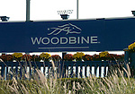 09 October 17: Scenes from around the track prior to the grade 1 Canadian International Stakes for three year olds and upward at Woodbine Racetrack in Rexdale, Ontario.