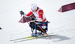 Sochi, RUSSIA - Mar 16 2014 - Sébastien Fortier competes in Cross Country Skiing Men's 10km Sitting at the 2014 Paralympic Winter Games in Sochi, Russia.  (Photo: Matthew Murnaghan/Canadian Paralympic Committee)