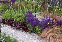 Red Lettuce, Iris, ornamental grass, pebble path, salvia. chives, herbs, vegetables, flowers intermixed