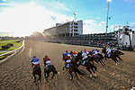 November 3, 2018: Horses leave the starting gate at the start of the Breeders' Cup Classic on Breeders' Cup World Championship Saturday at Churchill Downs on November 3, 2018 in Louisville, Kentucky. Matt Wooley/Eclipse Sportswire/CSM