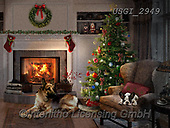 GIORDANO, CHRISTMAS ANIMALS, WEIHNACHTEN TIERE, NAVIDAD ANIMALES, paintings+++++,USGI2949,#xa# ,dog,dogs