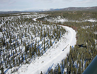 "A team runs down the trail in ""Gold Country"" on an old mining road between Takotna and Ophir on Thursday"