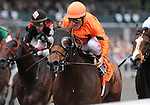 09 October 09: Fatal Bullet (no. 7), ridden by Eurico Da Silva and trained by Reade Baker, wins the 157th running of the grade 3 Phoenix Stakes for three year olds and upward at Keeneland in Lexington, Kentucky.