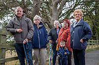 BNPS.co.uk (01202) 558833. <br /> Pic: CorinMesser/BNPS<br /> <br /> Pictured: John Challinor, chairman of the Parkstone Bay Residents Association, with concerned residents and the two dead oak trees. <br /> <br /> Police have launched an investigation into allegations a wealthy homeowner has killed two 'magnificent' oak trees because they blocked their sea views.<br /> <br /> The 70ft tall mature specimens have had holes drilled into their trunks and poison poured inside in a 'disgraceful' act of sabotage. <br /> <br /> The two trees stand on the edge of a recreation ground between Poole Harbour, Dorset, and a cluster of luxury homes that sell for between £2m to £3m.