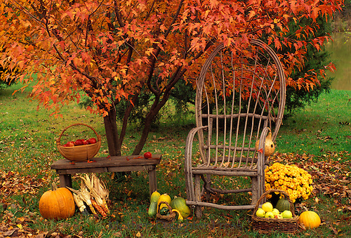 Bent willow chair and informal farm stand with fall harvest and handmade goods