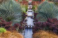 Los Angeles; Yucca rigida and Euphorbia 'Nothowlee' (Blackbird Spurge) - The Celebration Garden with water rill between matching double perennial borders; Huntington Botanic Garden
