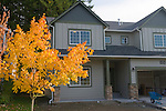 Grey House in Autumn