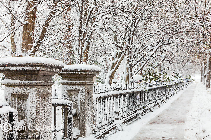 Fresh snow in the Boston Public Garden, Boston, MA, USA