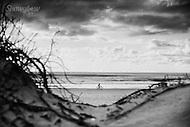 Image Ref: CA227<br /> Location: Byron Bay<br /> Date: 27 March 2016