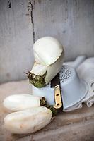 Gastronomie Générale /  Diététique / Aubergine Blanche Bio // General Gastronomy / Diet / Organic White Eggplant