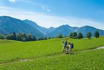 Deutschland, Bayern, Oberbayern, Landkreis Miesbach, Luftkurort Bayrischzell im Mangfallgebirge und am Fuss des Wendelsteins - Wanderer | Germany, Upper Bavaria, resort Bayrischzell at Mangfall mountains - hikers
