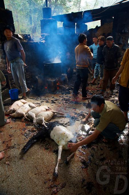 Dahsa Kali Animal Sacrifice Temple