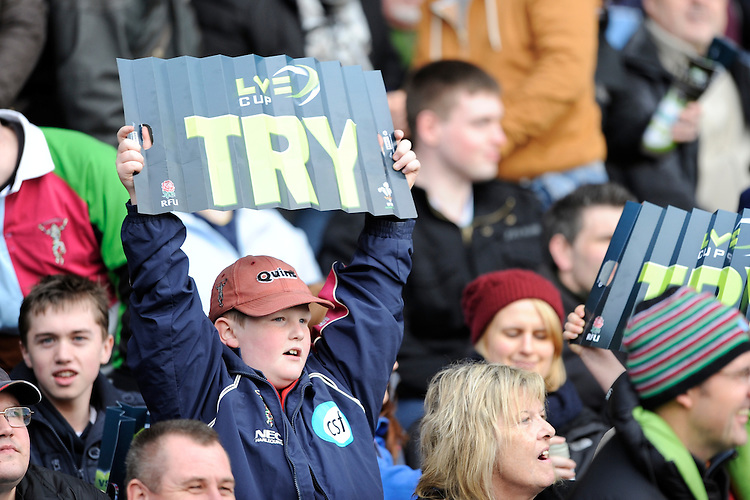 20130317 Copyright onEdition 2013©.Free for editorial use image, please credit: onEdition..A young Harlequins fan celebrates during the LV= Cup Final between Harlequins and Sale Sharks at Sixways Stadium on Sunday 17th March 2013 (Photo by Rob Munro)..For press contacts contact: Sam Feasey at brandRapport on M: +44 (0)7717 757114 E: SFeasey@brand-rapport.com..If you require a higher resolution image or you have any other onEdition photographic enquiries, please contact onEdition on 0845 900 2 900 or email info@onEdition.com.This image is copyright onEdition 2013©..This image has been supplied by onEdition and must be credited onEdition. The author is asserting his full Moral rights in relation to the publication of this image. Rights for onward transmission of any image or file is not granted or implied. Changing or deleting Copyright information is illegal as specified in the Copyright, Design and Patents Act 1988. If you are in any way unsure of your right to publish this image please contact onEdition on 0845 900 2 900 or email info@onEdition.com