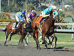 October 2, 2010.Jaycito riden by Mike Smith wins the The Norfolk Stakes at Hollywood Park, Inglewood, CA._Cynthia Lum/Eclipse Sportswire