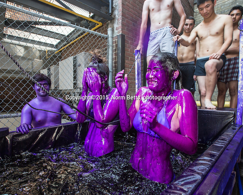 FIRSY DAY AT UNI  - First year students  in The University of Toronto's dept. of engineering traditionally are dyed purple…. by upper class engineers.... the dye scrubs off in about a week.<br /> <br /> normbetts@canadianphotographer.com<br /> 416 460 8743