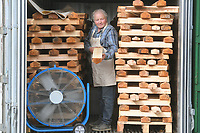 BNPS.co.uk (01202) 558833<br /> Pic: ZacharyCulpin/BNPS<br /> <br /> Tim has to dry out the Willow<br /> <br /> Master bat maker Tim Keeley is putting the finishing touches to his beautifully hand-crafted pieces of willow ahead of the forthcoming cricket season.<br /> <br /> Tim, 62, has made almost half a million bats since starting out as an apprentice at Gray Nicholls aged 16 in 1975.<br /> <br /> He is the founder of family business Keeley Cricket, in Battle, East Sussex, which he runs with his brother Nick who has 35 years of bat-making experience.