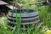 Pretty wooden staves Rain barrel in garden of flowers, collection and conservation of water for irrigation