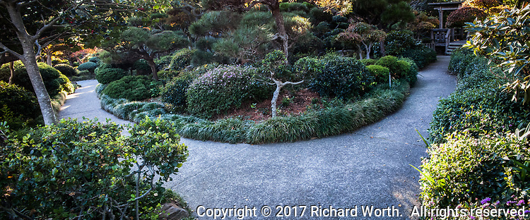 Pick your path at the Japanese Garden in Hayward, part of the Hayward Area Recreation and Park District.
