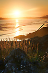 Artistic sunset scenery at Pacific Rim National Park beach with grass glowing in the soft light of the setting sun. Pacific ocean shore in Tofino, Vancouver Island, BC, Canada. Image © MaximImages, License at https://www.maximimages.com
