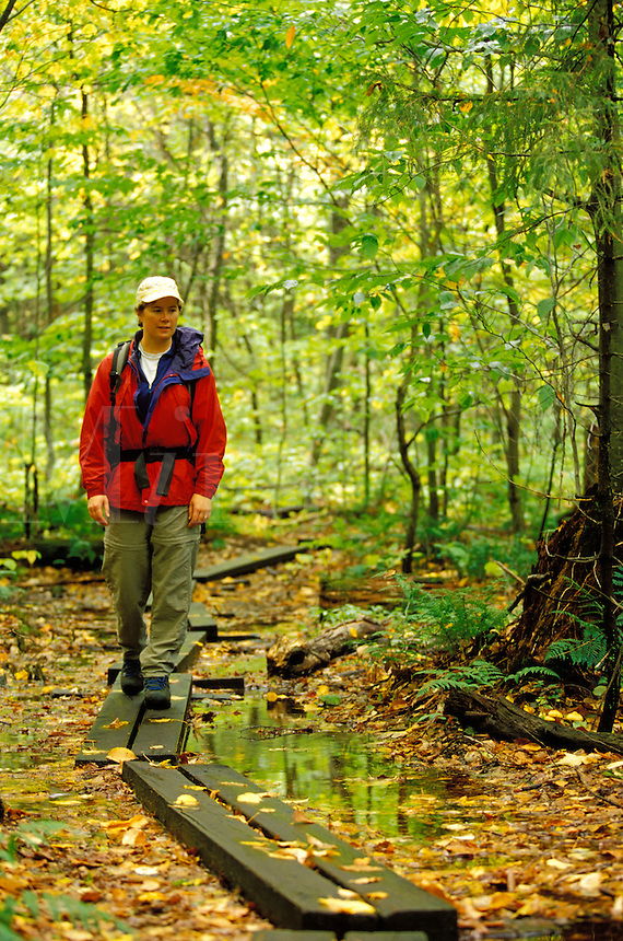 Woman hiking on boardwalk trail through forest, Snowy Mountain Trail, near Indian River, Hamilton County, Adirondack State Park, N