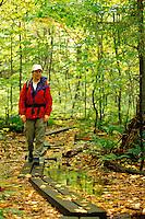 Woman hiking on boardwalk trail through forest, Snowy Mountain Trail, near Indian River, Hamilton County, Adirondack State Park, N