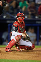 Reading Fightin Phils catcher Henri Lartigue (8) during an Eastern League game against the Trenton Thunder on August 16, 2019 at FirstEnergy Stadium in Reading, Pennsylvania.  Trenton defeated Reading 7-5.  (Mike Janes/Four Seam Images)