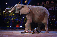 -- NO TABLOIDS NO SITE WEB - 41st International Circus Festival of Monte-Carlo Opening. Erwin Frankello's elephants.