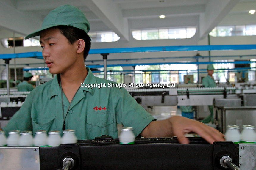 A man works on the dairy drink bottling line at the Wahaha Beverage Manufacturing Base in Hangzhou, China. The privately owned Wahaha group is the largest beverage manufacturer in China with a total production of 3.75 million tons in assorted beverages last year. The group has recently decided to ship nearly 15 thousand cases of its Future Cola to the U.S..07-JUN-04