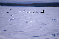 Jack Berry on Yukon River Near Galena