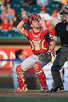Peoria Chiefs catcher Steve Bean (8) looks for a pop up foul ball during a game against the Lansing Lugnuts on June 6, 2015 at Cooley Law School Stadium in Lansing, Michigan.  Lansing defeated Peoria 6-2.  (Mike Janes/Four Seam Images)