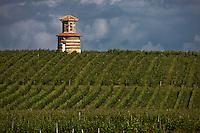 Europe/France/Aquitaine/33/Gironde/Saint-Yzans-de-Médoc: Vignoble de Château  Loudenne et pigeonnier de Château Loudenne
