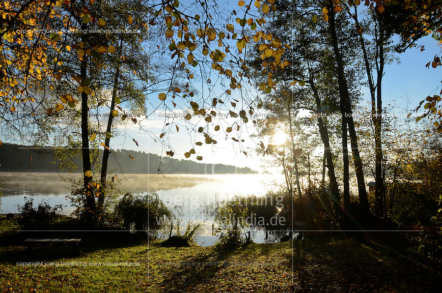 Germany, Plau, trees and lake in autumn / Deutschland, Plauer See, buntes Laub im Herbst