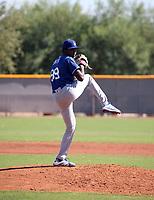 Julian Smith - 2018 AIL Dodgers (Bill Mitchell)