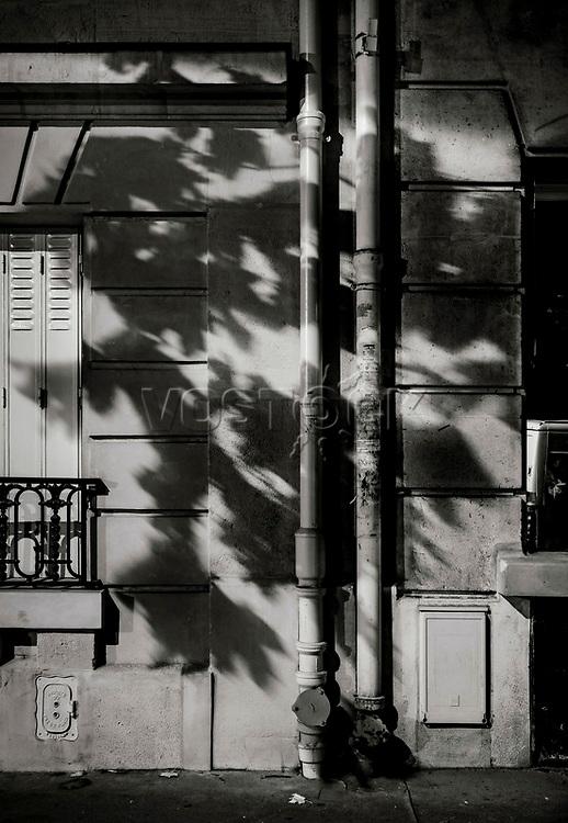 Paris, Tree Shadow, Baumschatten, Baum, Blaetter [werfen] Schatten an die Hauswand, 28.11.2013<br /> <br /> <br /> <br /> ***HIGHRES AUF ANFRAGE*** ***VOE NUR NACH RUECKSPRACHE***<br />  ***Keine Social_Media Nutzung***<br /> <br /> Engl.: Europe, France, Paris, Tree Shadow, shadows, trees, tree, leaves, house wall, facade, 28 November 2013<br /> ***HIGHRES ON REQUEST***PUBLICATION ONLY AFTER CONSULTATION WITH LAIF***<br /> ***No social media use***