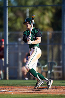 Dartmouth Big Green designated hitter Dustin Shirley (6) at bat during a game against the Northeastern Huskies on March 3, 2018 at North Charlotte Regional Park in Port Charlotte, Florida.  Northeastern defeated Dartmouth 10-8.  (Mike Janes/Four Seam Images)