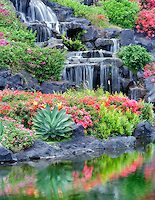 Waterfalls and flower gardens at the Grand Hyatt, Kauai, Hawaii.