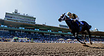 November 1, 2019: Tap Back, ridden by Victor Espinoza, wins the Golden State Juvenile on Breeders' Cup World Championship Friday at Santa Anita Park on November 1, 2019: in Arcadia, California. Alex Evers/Eclipse Sportswire/CSM