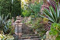 Stone stairway with Agave angustifolia variegata (Caribbean Agave), Jim Bishop and Scott Borden garden(