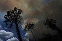 Queimada<br /> territórios quilombolas que sofrem forte pressão da indústria mineral, com a retirada de bauxita pela Mineração Rio do Norte, o comércio ilegal dos madeireiros além do Plano Nacional de Energia 2030, e seus projetos de 15 hidrelétricas para Bacia do Trombetas.Oriximiná, Pará, Brasil.<br /> Foto Paulo Santos<br /> 24/09/2016