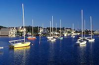 AJ1513, Cape Cod, Massachusetts, Boats buoyed at Harwich Port marina in Harwich, Massachusetts.