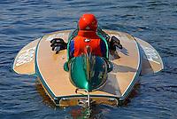 2016 Antique Raceboat Regatta