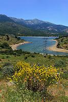 Stausee von Calacuccia, Korsika, Frankreich
