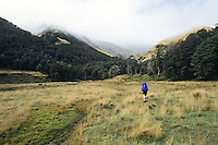 A tramper on riverside flats of the Anne River and heading toward the Anne Saddle on St. James Walkway - Lewis Pass National Reserve