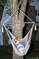 Life-sized skeletons are dressed up for Halloween decorations along Hillcrest Road in Belmont, Massachusetts, USA, on Mon., Oct. 30, 2017. A resident said the neighborhood has been doing similar coordinated decorations along the road for the previous 3 or 4 years.  In this image, the skeleton is wearing a Princeton University shirt and lounging in a hanging chair.