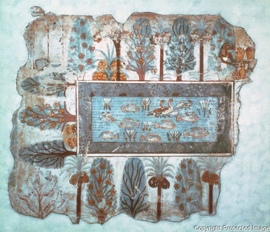 Egyptian Tomb Paintings:  The Garden Pool, c. 1400 BC.  Trustees of the British Museum.  Reference only.