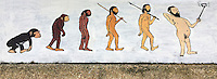 """Selfie and the evolution of Man."" Wall-art in Phuket Thailand"