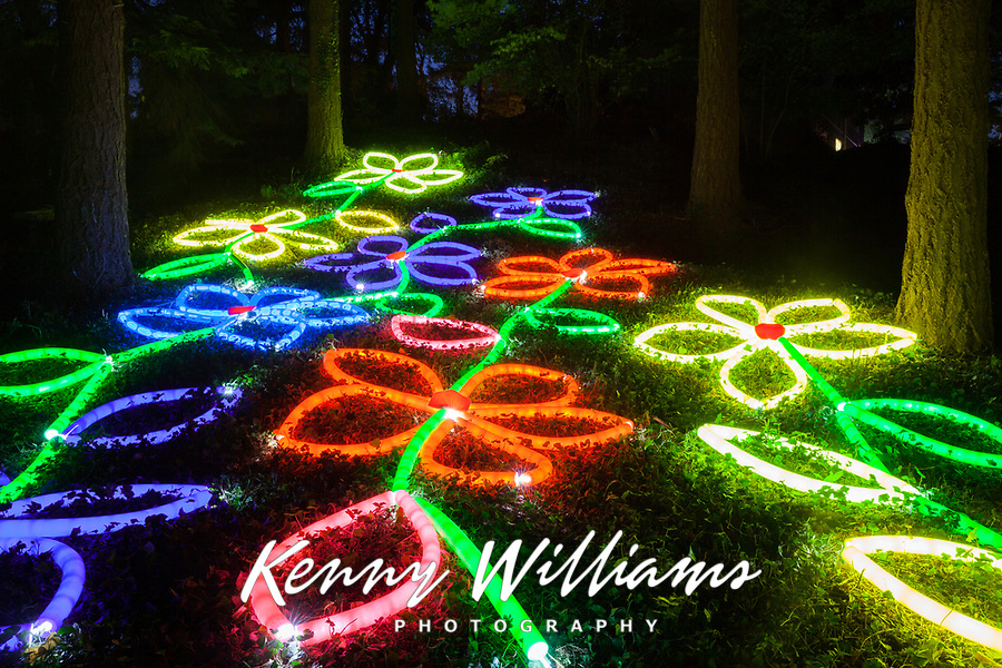 Glowing Flowers Art Installation, Arts A Glow Festival 2017, Dottie Harper Park, Burien, WA, USA.