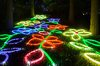 Glowing Flowers Art Installation, Arts A Glow Festival 2017, Dottie Harper Park, Burien, WA, USA.
